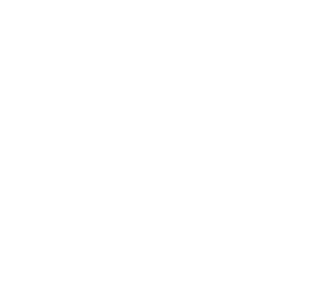 Brand Star Icon